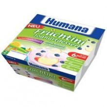 Humana Desert iaurt mere si afine 4x100g