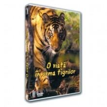 O viata pe urmele tigrului Dvd Video